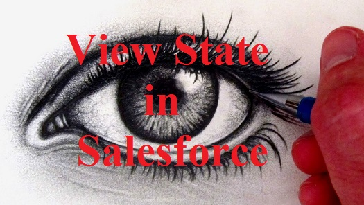 What is View State in Salesforce