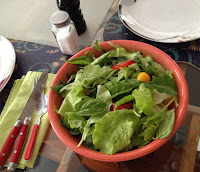regrow, garbage garden, scrap garden, green gardening, regrowing, how to regrow