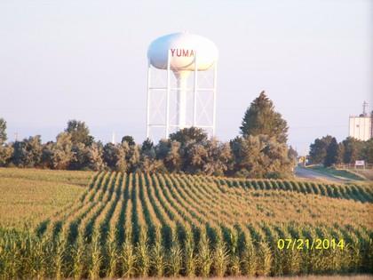 Yuma CO water tower, fields (l-r wheat, corn), trees, street, silos