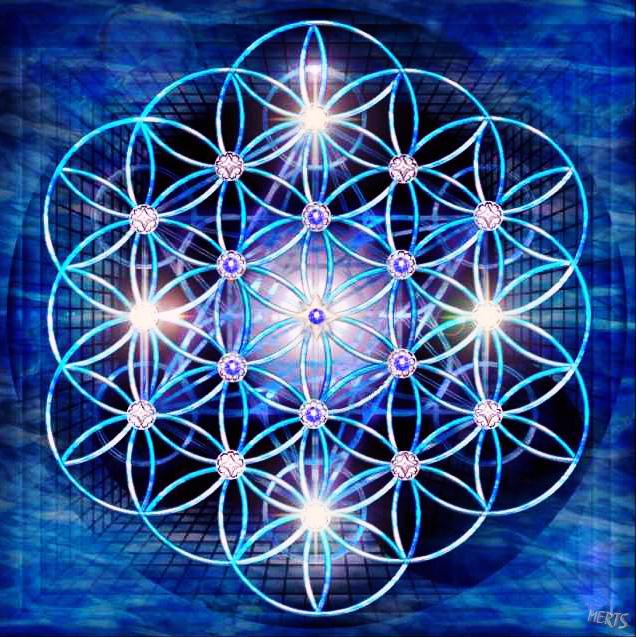 Resultado de imagen de flor del universo