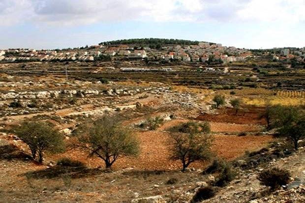 tanah-palestina