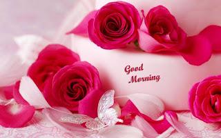 Romantic Good Morning Flower Wallpaper