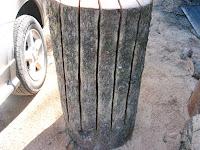約1mの長さの楠の丸太