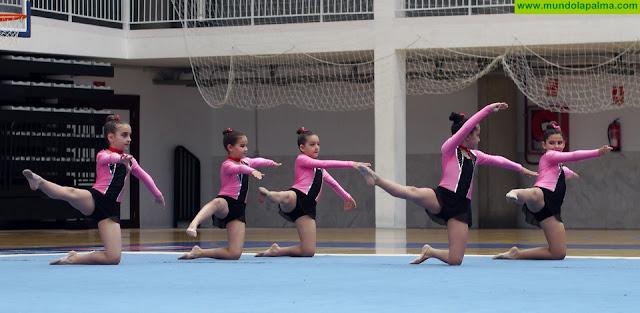 El Cabildo de La Palma imparte cursos para formar a profesionales de la gimnasia rítmica