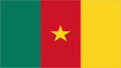 Algumas curiosidades sobre Camarões