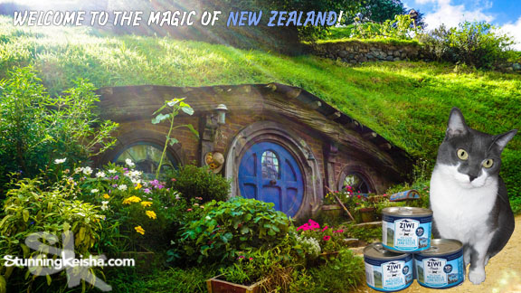 Ziwi Peak: Cat Food That Can Become a Hobbit, er, Habit #ChewyInfluencer