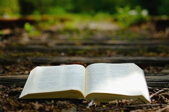 Visitantes espaciales en la Biblia y otros libros sagrados