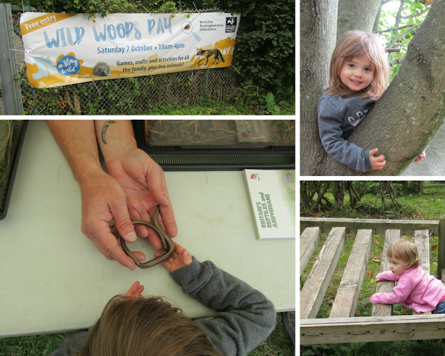 Wild Woods Day with BBOWT