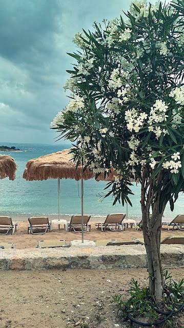 piaszczysta plaża okolice Chanii, Kreta
