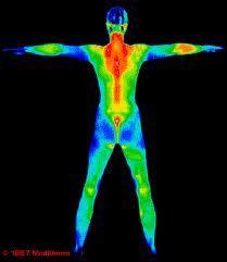 y4ehdvvn 13 Jenis Sistem Identifikasi Yang Membedakan Antar Manusia