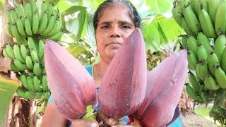 FARN FRESH BANANA FLOWER (fry and vada) Cooking Two Varieties