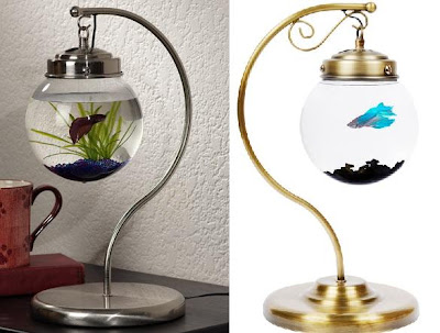 Creative Fish Bowls and Cool Aquarium Designs (15) 7