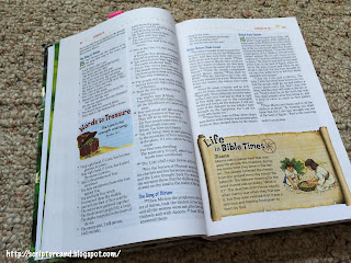 NKJV Adventure Bible | scriptureand.blogspot.com