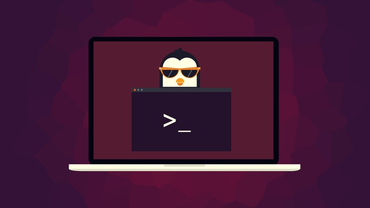 Ubuntu Web Development Setup - Udemy Free Course
