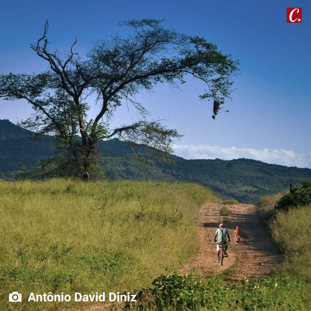 ambiente de leitura carlos romero gonzaga rodrigues forca do nordeste luiz gonzaga paraiba sertao rio pajeu
