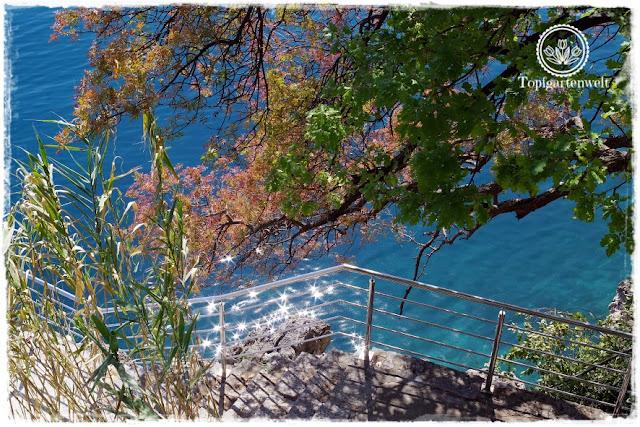 Gartenblog Topfgartenwelt Kroatien: Karibikfeeling in Opatija