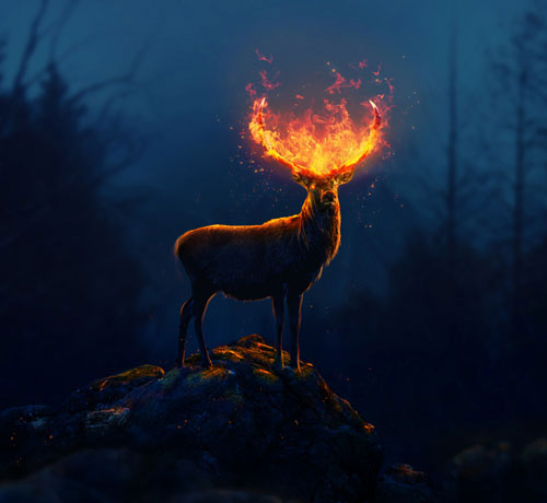 Fantasy Flaming Deer Adobe Photoshop CC Tutorial