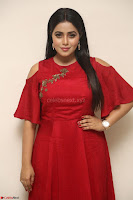 Poorna in Maroon Dress at Rakshasi movie Press meet Cute Pics ~  Exclusive 183.JPG