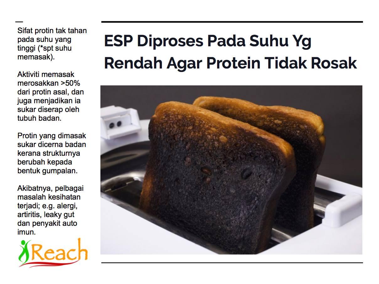 √ 25 Sumber Makanan Yang Mengandung Zinc (Seng) Paling Tinggi