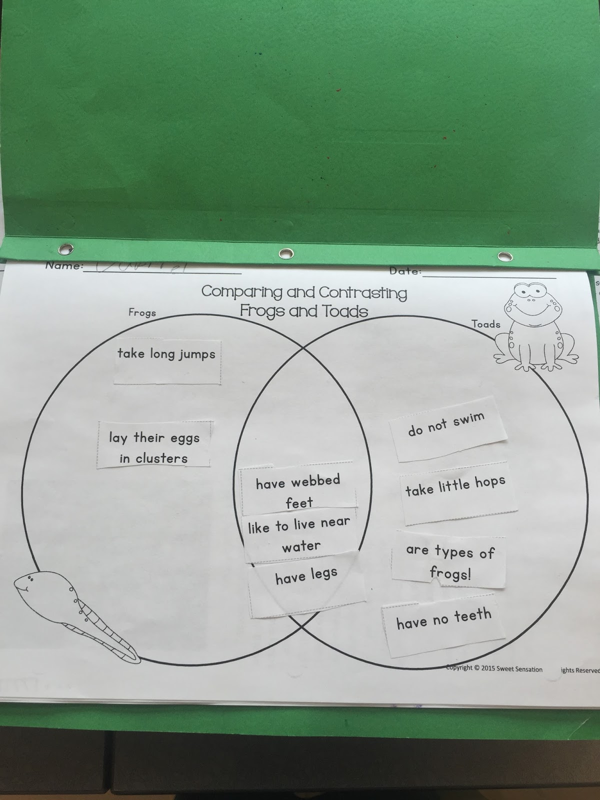 Frog And Toad Venn Diagram Digital Clock Circuit Using 555 Timer Miss Vanchu 39s Classroom Blog Life Cycle Of A