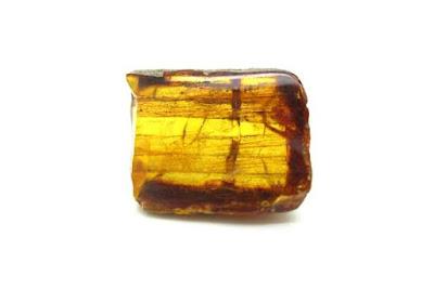 precio del ambar por gramos ambar pulido | foro de minerales