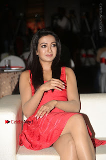 Actress Catherine Tresa Unveils Intex Air Conditioners  0055.jpg
