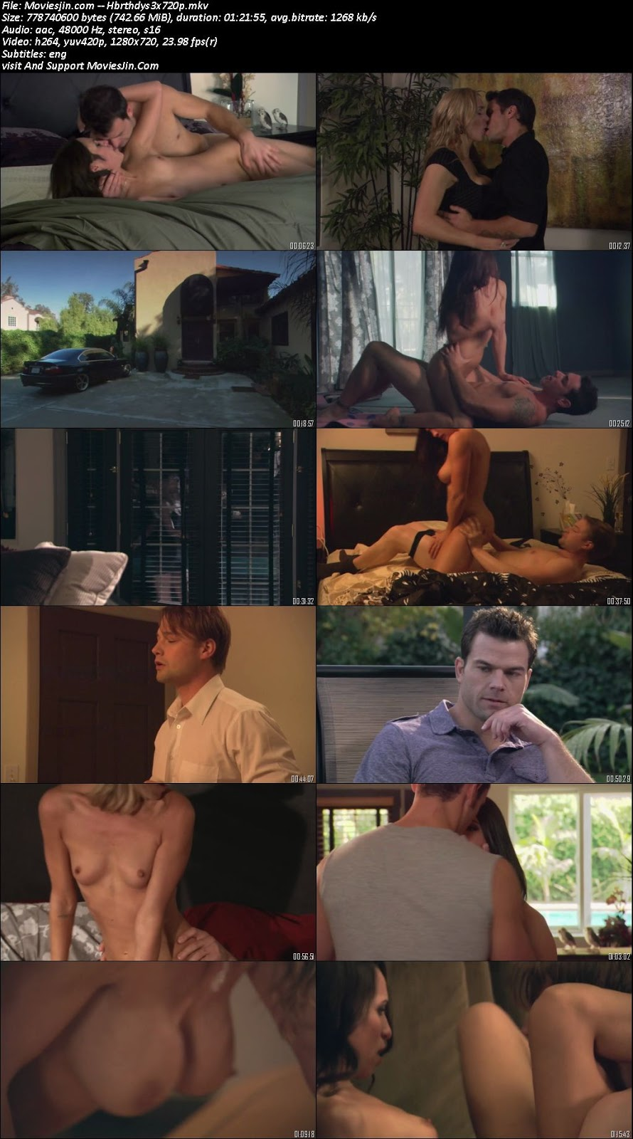 Birthday Sex 2012 Hot Movie 720p WEBDL 700mb