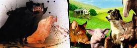 Rebelión en la granja, Orwell vs Stephenson - Cine de Escritor