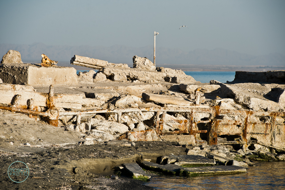 © moscaphoto.com - Salton Sea and Bombay Beach California