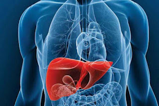 Remedios para un hígado sano