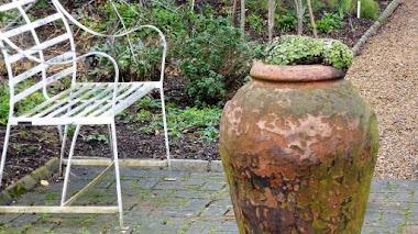 Chelsea Physic Garden en Londres. Plantas medicinales y de interés etnobotánico
