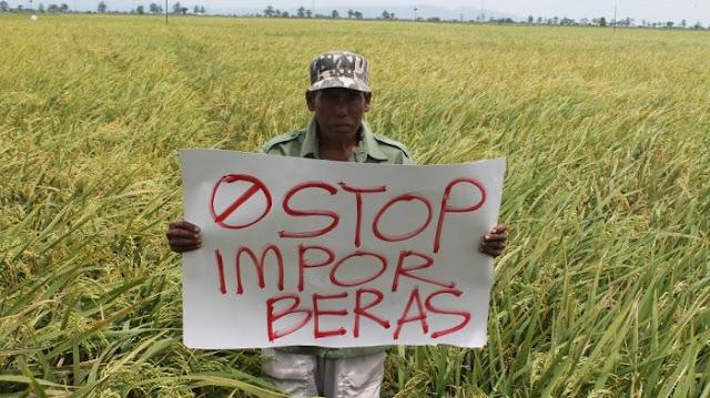 Akui Impor Beras, Prodem: Harusnya Jokowi Jujur Sudah Menyengsarakan Petani