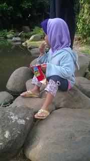 Menatap Kolam Ikan