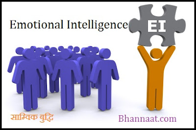 Emotional Intelligence in Hindi