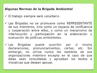 Normas de la Brigada Ambiental