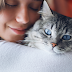 15 Signs That You're a Cat Lover