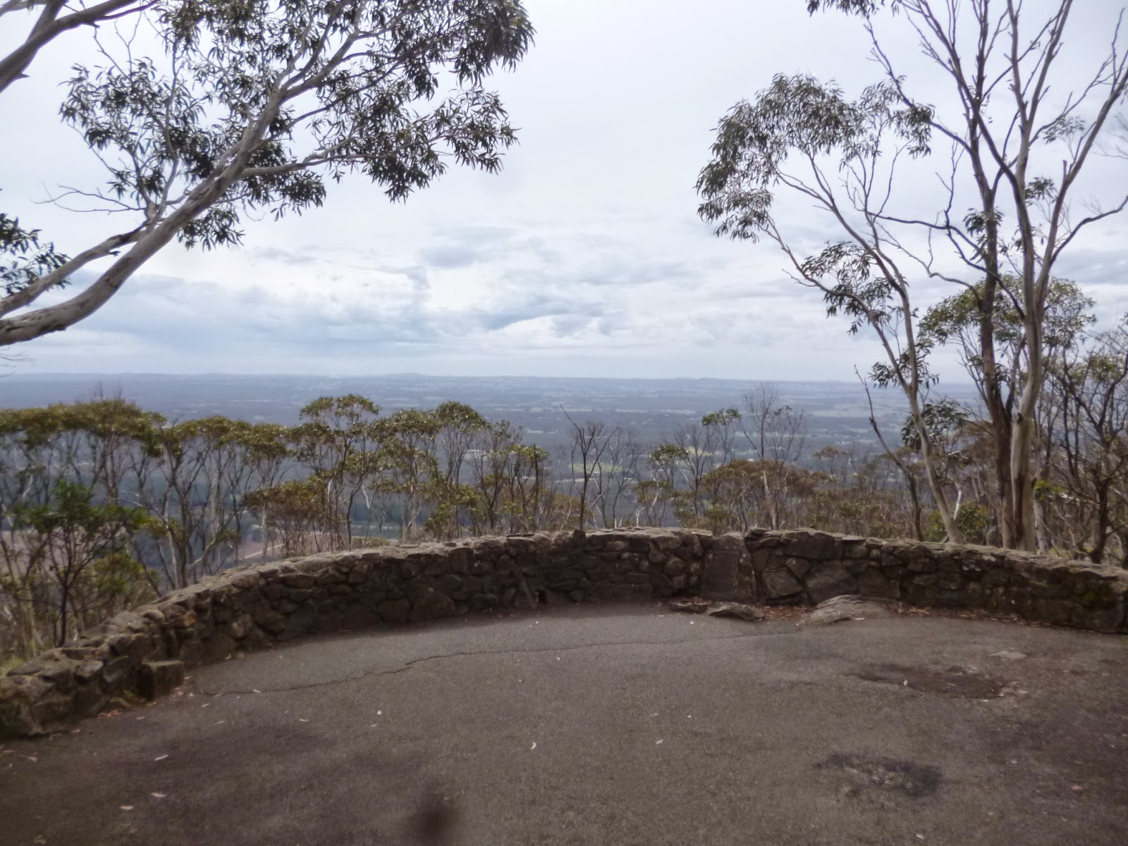 Major Mitchell Looking - Mount Macedon