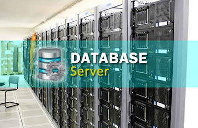Memahami Pengertian dan Sejarah Database Server Untuk Pemula