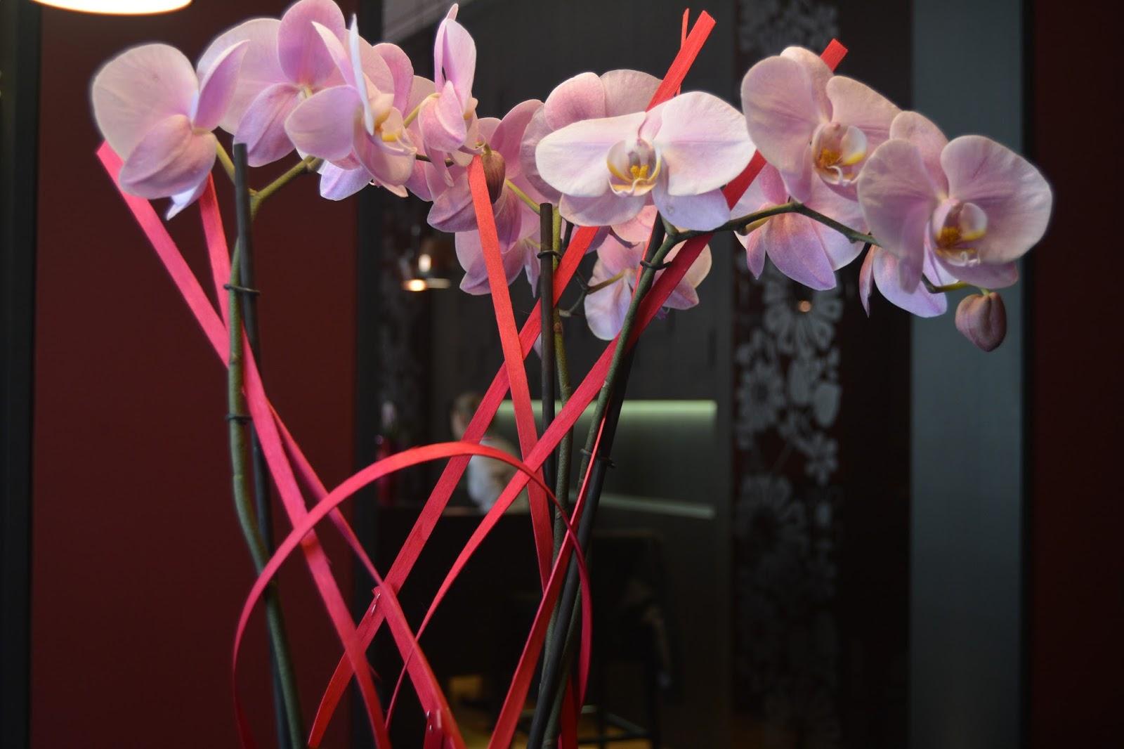 Hotel D, Strasbourg, Flowers