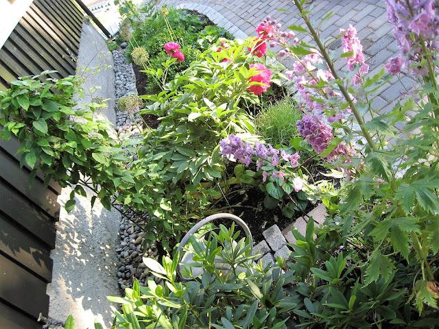 Elvestein er brukelig på flere måter i hagen  - mellom husvegg og blomsterbed DSC_008IMG_3208 (2)-min