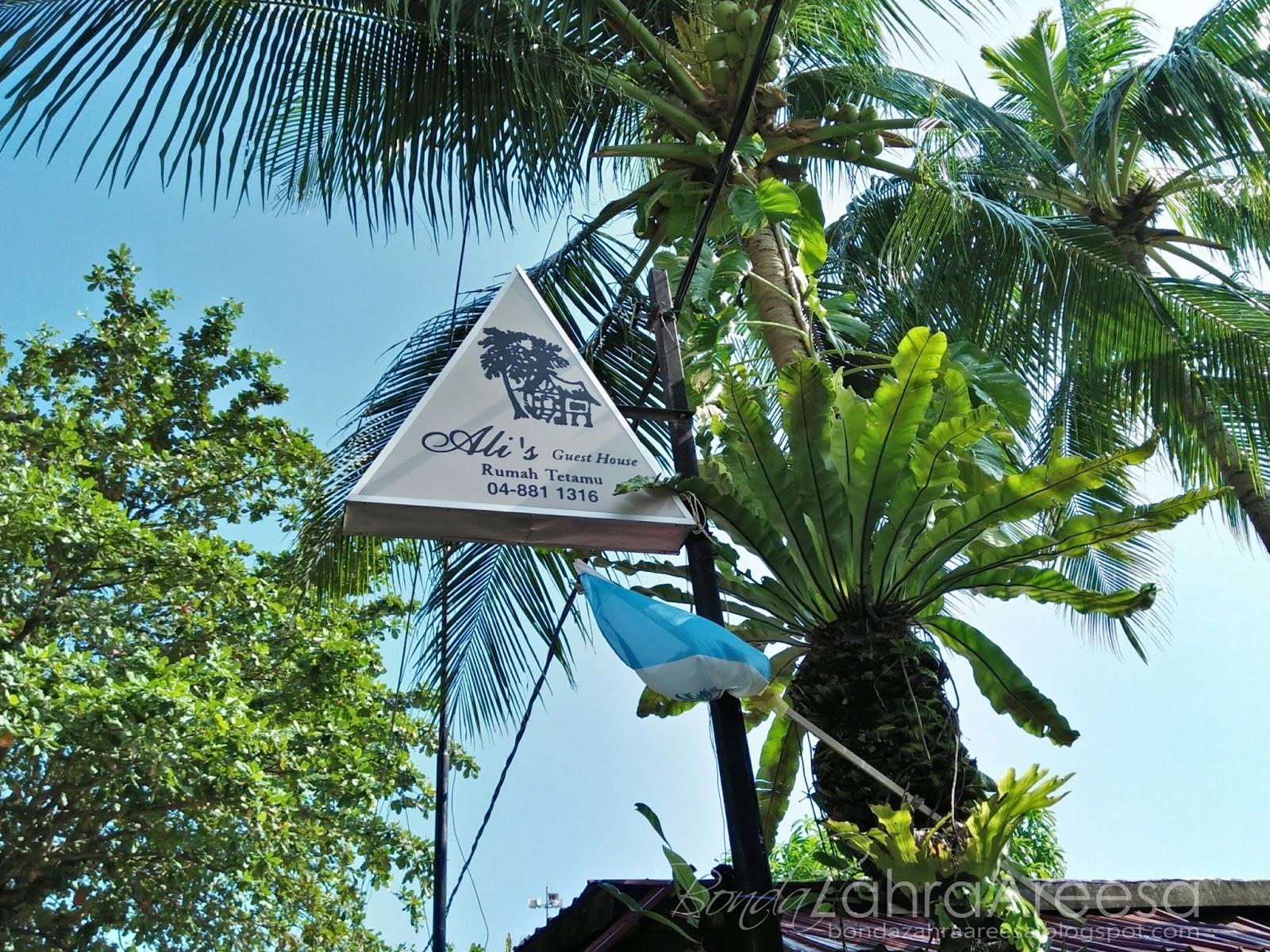 Alis guesthouse batu feringghi