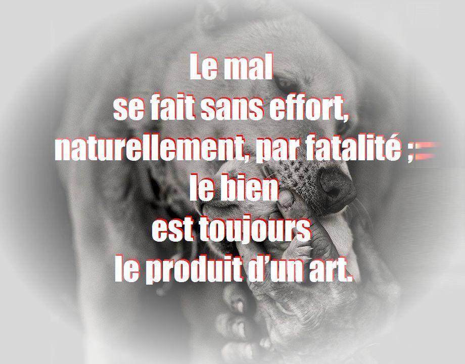 rencontres poesie poemes amitie