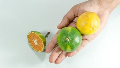 nutrisi, vitamin, vitamin sintesis, vitamin sintetis,
