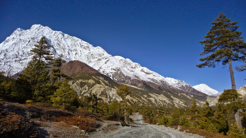 annapurna view from Manang