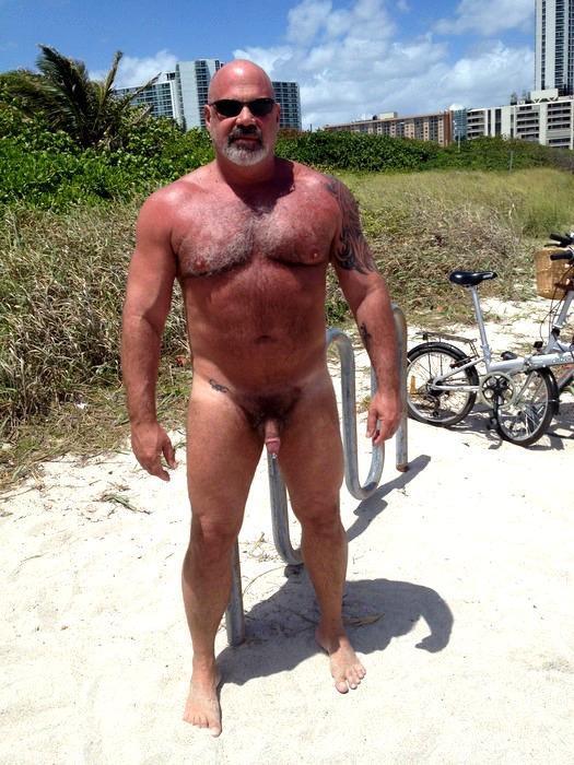 naked black bear