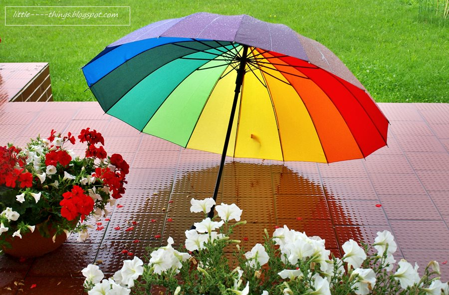 colourful umbrella, rainy day, colors of rainbow