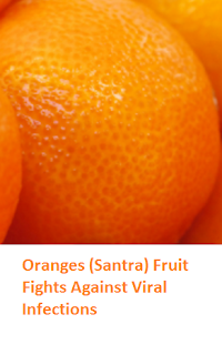 Health Benefits of Oranges (Santra) Fights Against Viral Infections