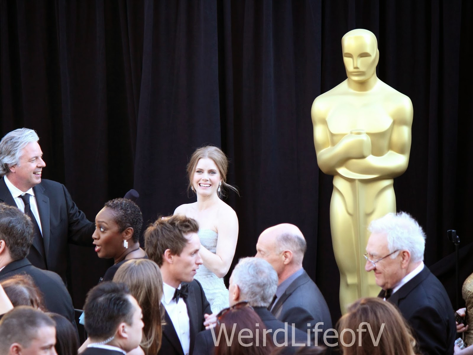 Amy Adams looking at the fans at the 2013 Oscars.