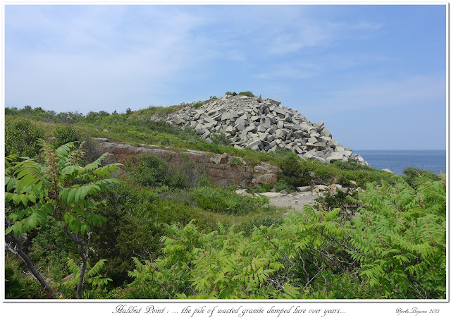 Halibut Point: ... the pile of wasted granite dumped here over years...