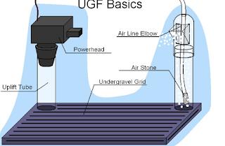Undergravel Filter(UGF)